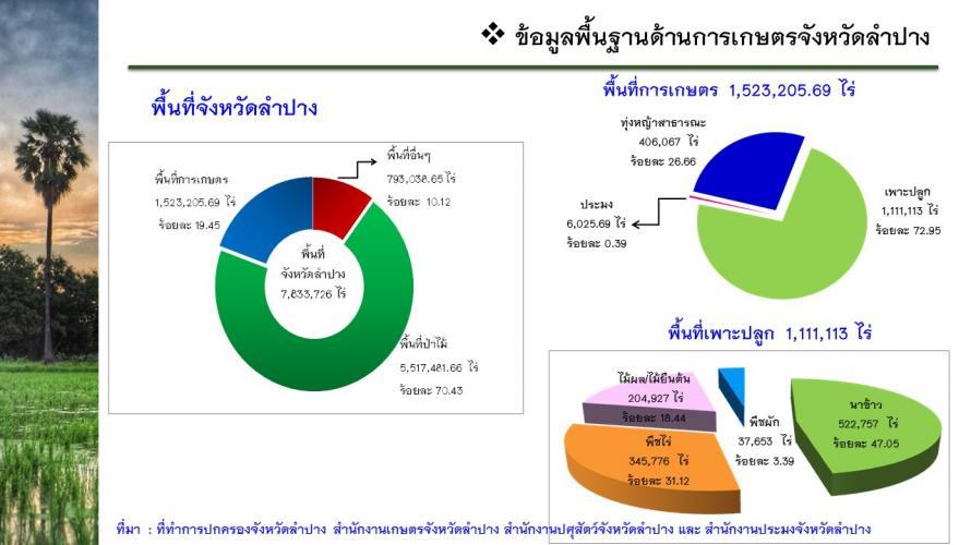 ข้อมูลการเกษตร3